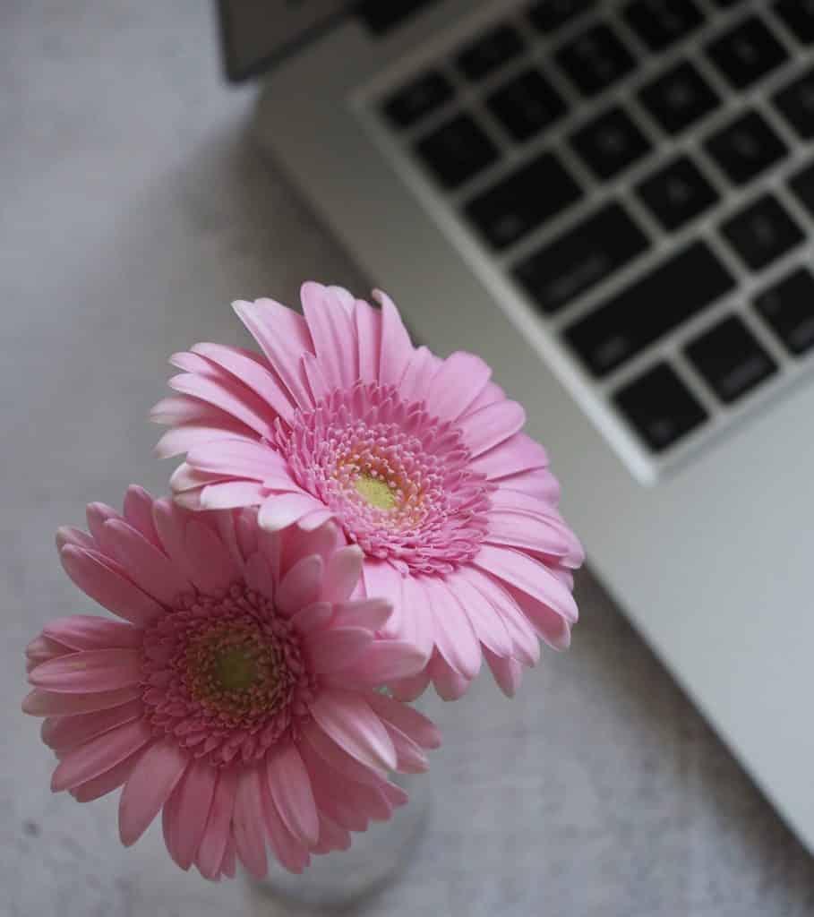 fiore-sezione-scegli-me